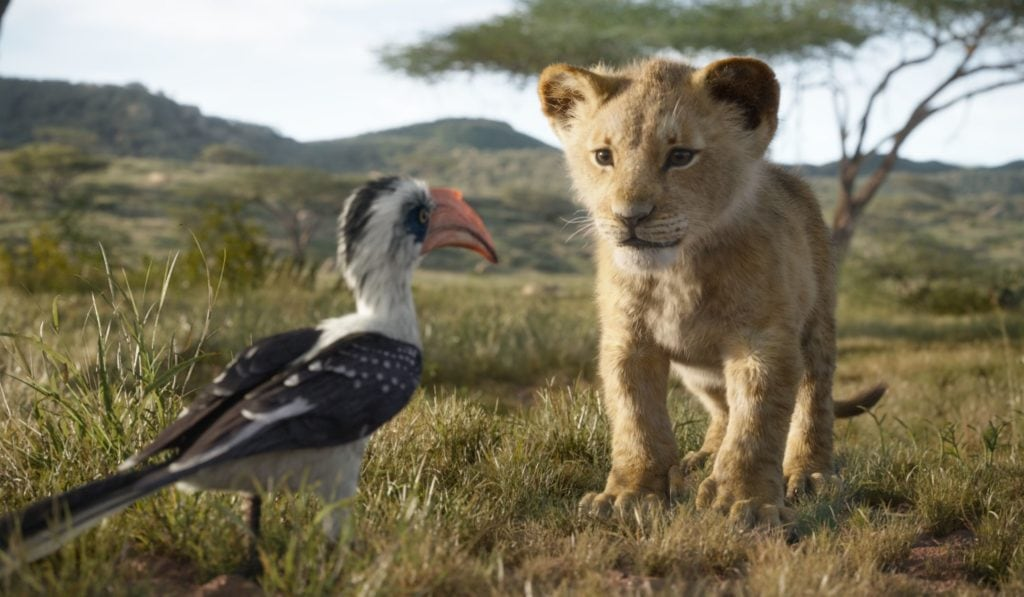 "THE LION KING - Featuring the voices of John Oliver as Zazu, and JD McCrary as Young Simba, Disney's ""The Lion King"" is directed by Jon Favreau. In theatres July 19, 2019...© 2019 Disney Enterprises, Inc. All Rights Reserved."