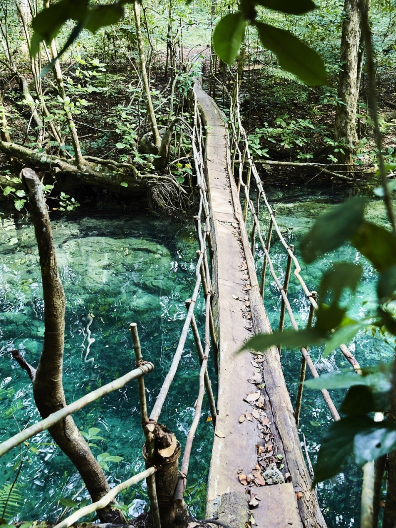This bridge broke after we crossed it to get to the Mata Jitu waterfall on Moyo Island