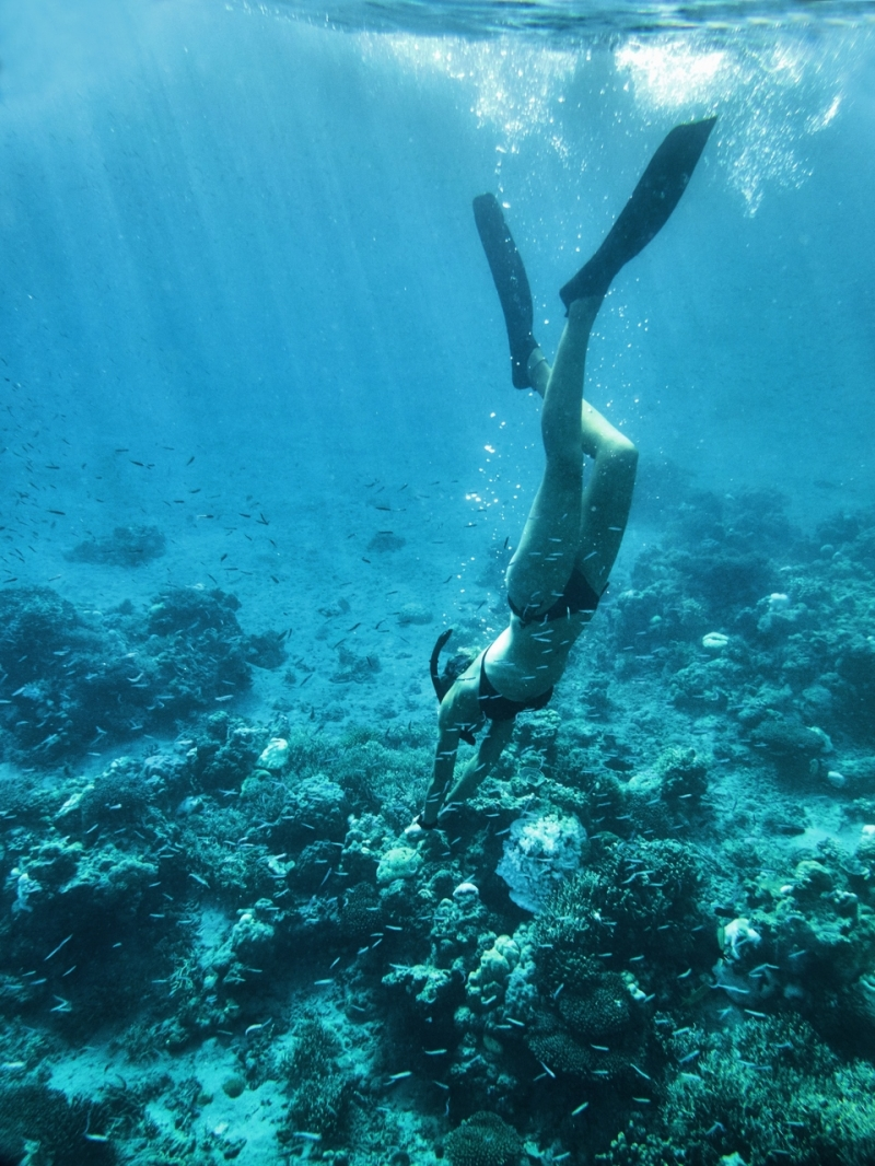 Free diving in the calm waters around Moyo Island
