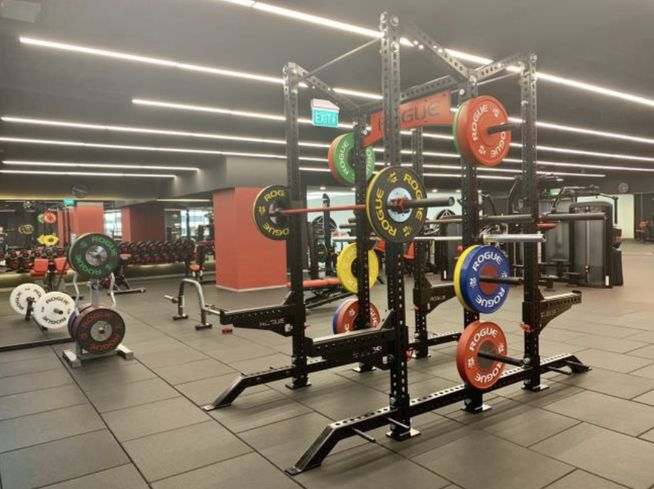 The squatting rack at the TFX gym