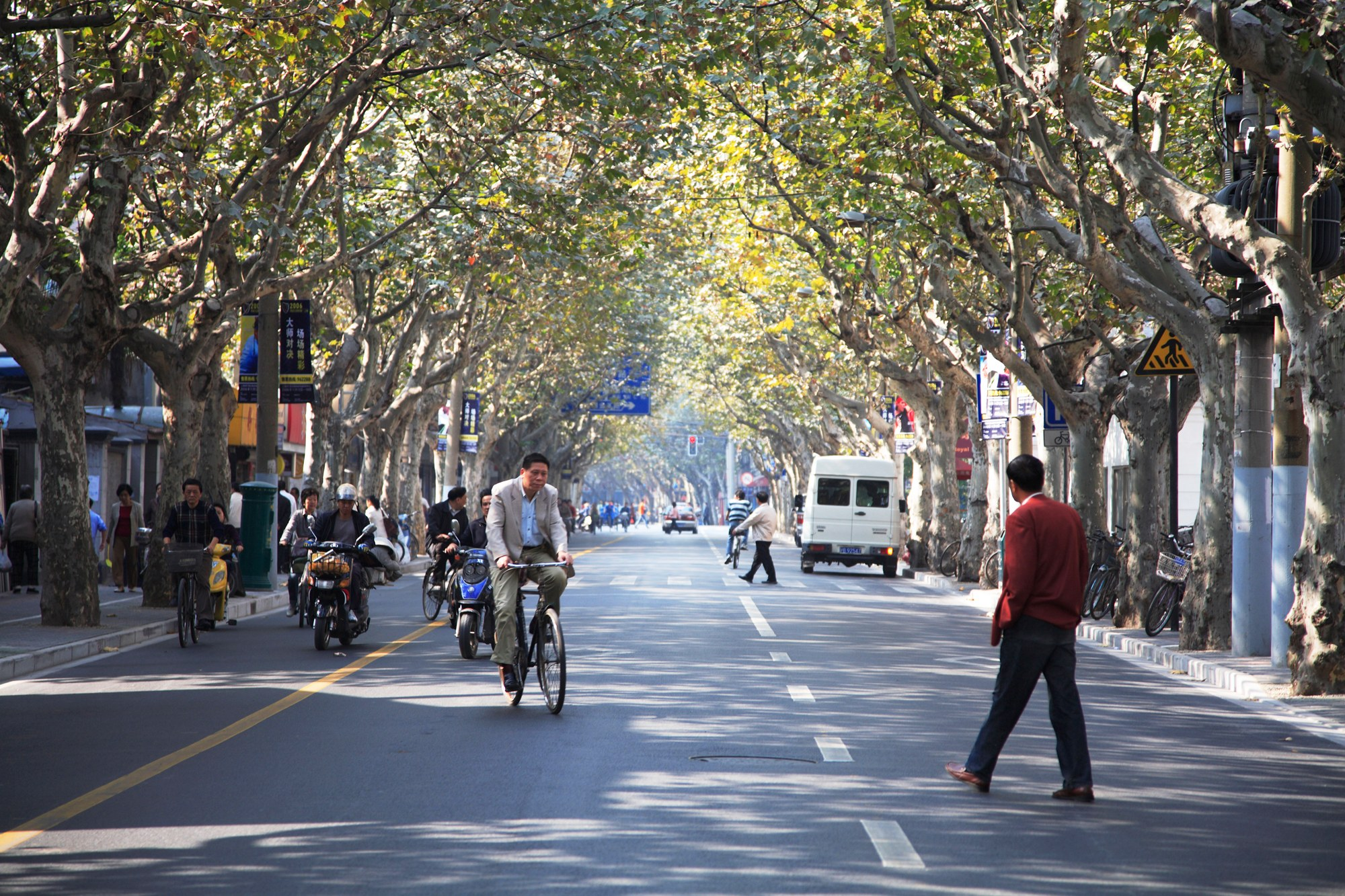 Shanghai travel guide: The streets along French Concession.