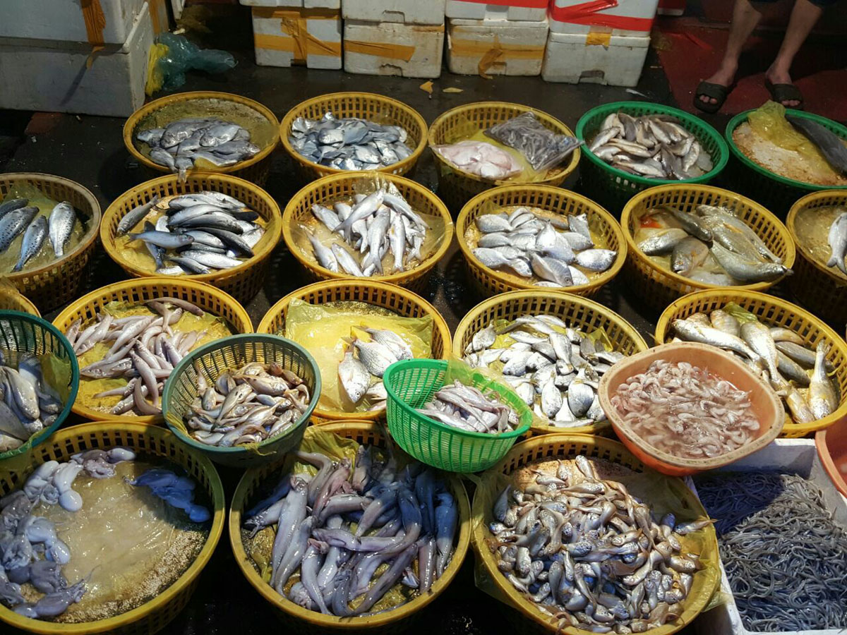 China, Xiamen: Bashi Seafood market