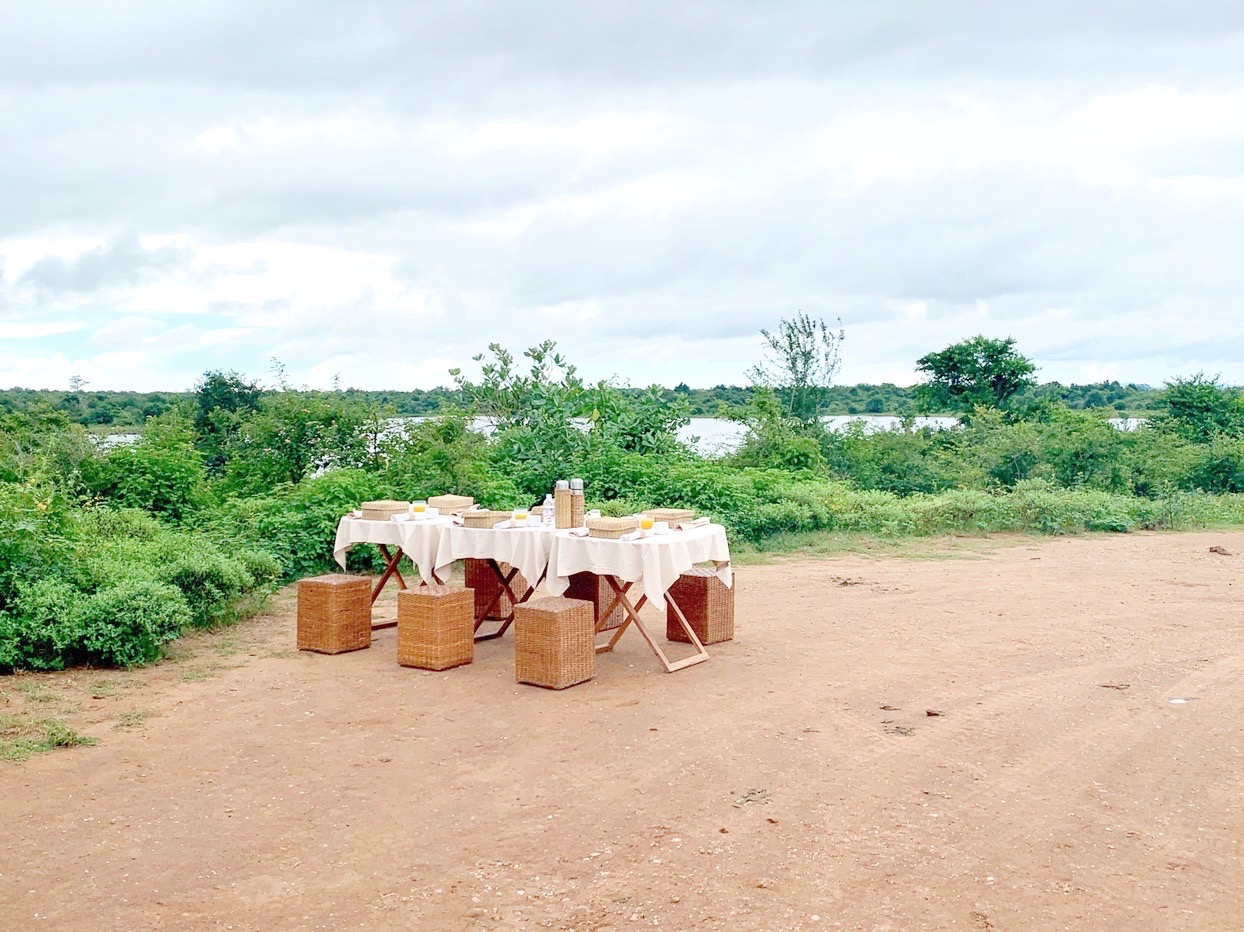 An Aman Style Picnic at Udawalawe National Park