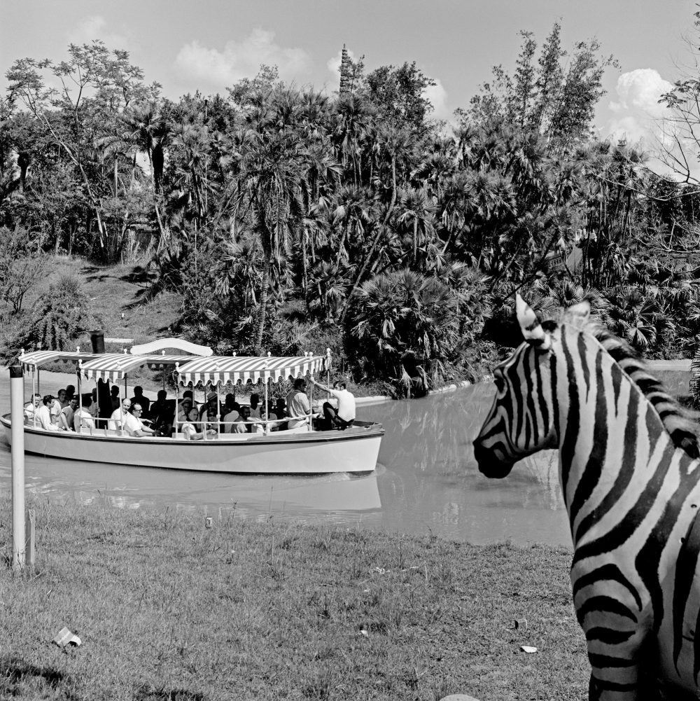jungle cruise behind the attraction